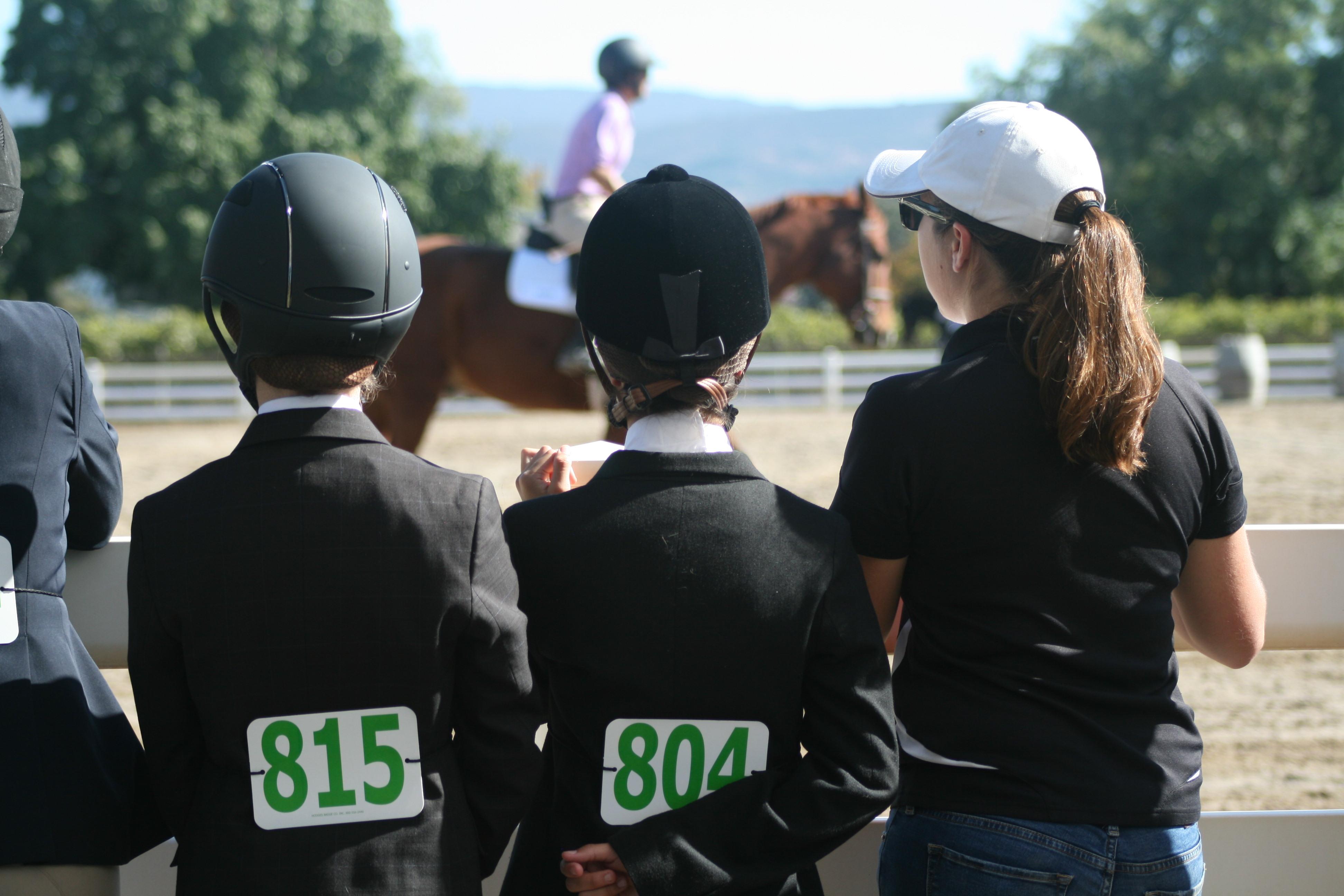 IEA Horse Show
