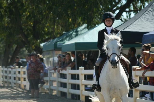 IEA Horse Show in Napa